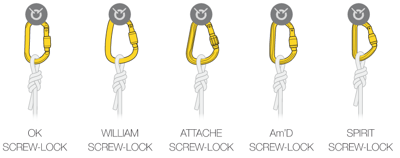 choice_of_carabiners03